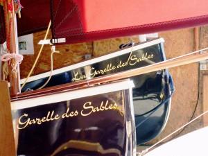 gazelle_des_sables (26)