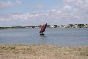 petit-voilier-transportable-insubmersible-sables-d-olonne-2017 (13)