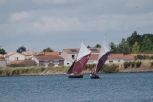 petit-voilier-transportable-insubmersible-sables-d-olonne-2017 (15)